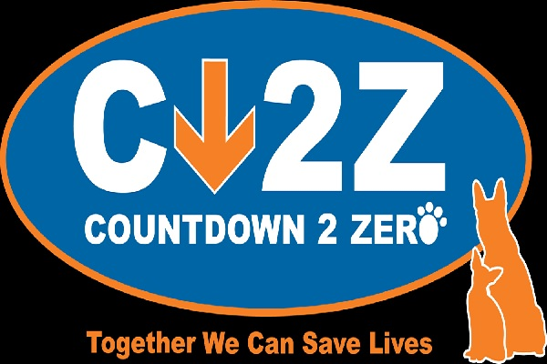 Countdown 2 Zero logo - featured